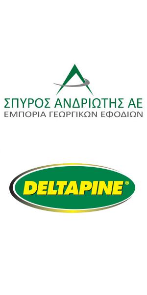 ΑNDRIOTIS