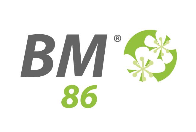 LOGO BM86