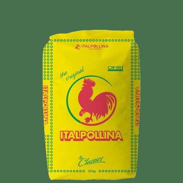 italpolina 01
