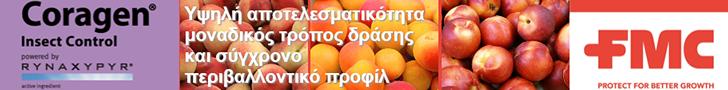 FMC peach 728x90