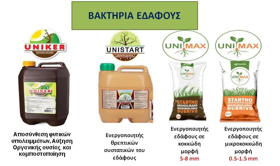 bakthria 1 1