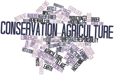 16498488 abstract word cloud for conservation agriculture with related tags and terms