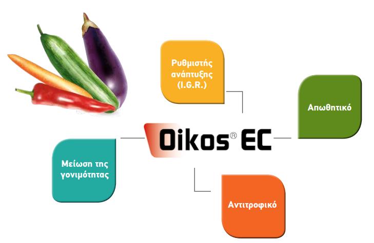 OIKOS EC 2