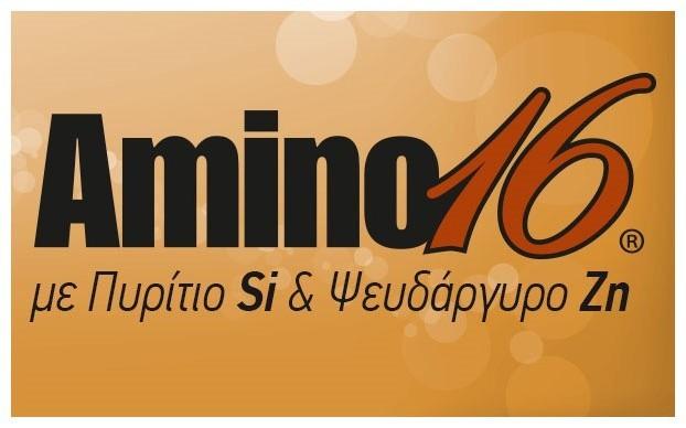 Amino16 SiZn logo 622x388