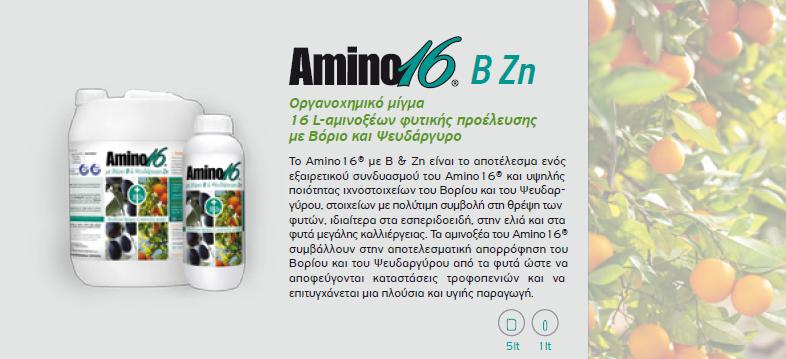 amino16 B Zn