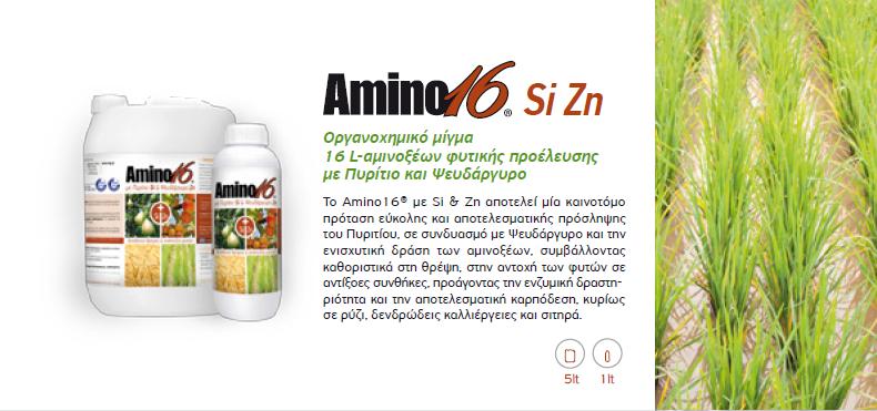 amino16 Si Zn