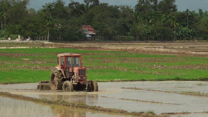 tractor is leveling a ground with water slowly on the agricultural land in summer sunny day sla4h6r3 thumbnail full01