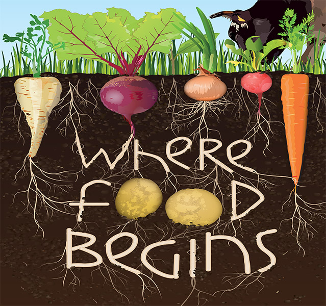 where food begins