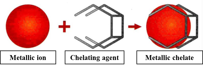 Chelante