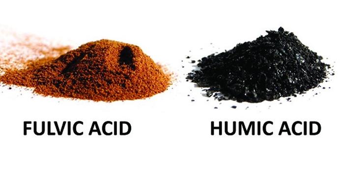 Χουμικά ή φουλβικά οξέα; Τι χρειάζονται τα φυτά σας; - Farmacon - Blog - Η  #1 online αγροτική εφαρμογή
