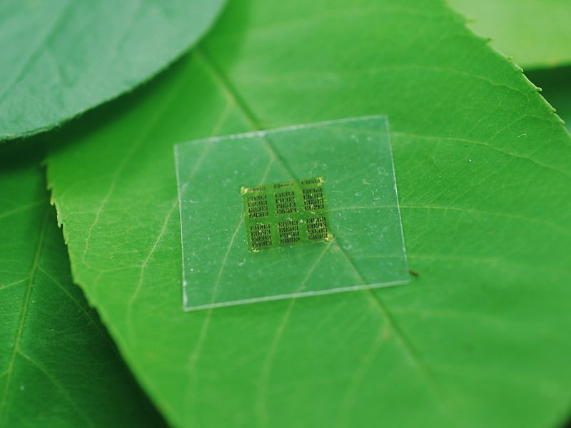 microchip2