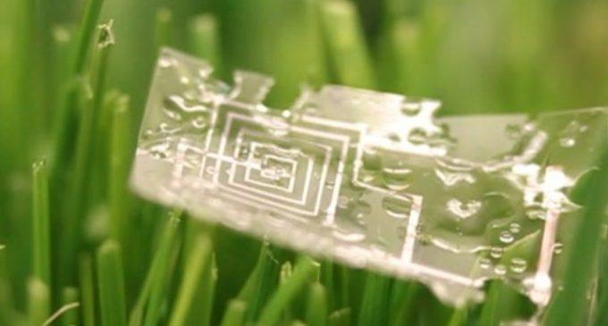 microchip3
