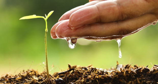 soilmoisture