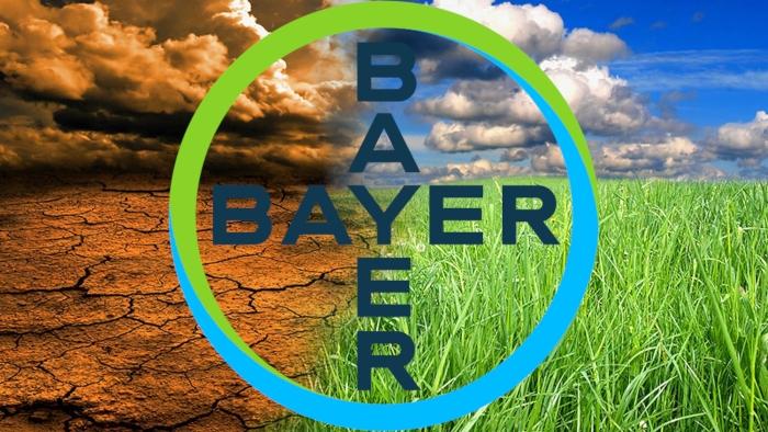 Η Bayer σε κορυφαία θέση στον τομέα των δράσεων βιωσιμότητας για το κλίμα, έπειτα από αξιολόγηση της CDP