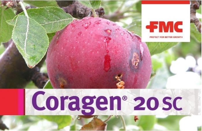 Coragen 20SC, με την καινοτόμο δραστική rynaxypyr®...για άμεση προστασία από την Καρπόκαψα!