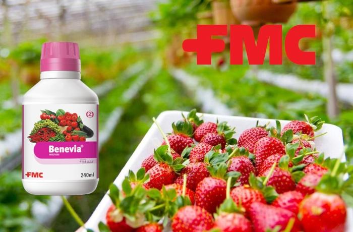 Άδεια διάθεσης στην αγορά στο εντομοκτόνο BENEVIA® 10OD, για περιορισμένη και ελεγχόμενη χρήση στην καλλιέργεια της φράουλας θερμοκηπίου