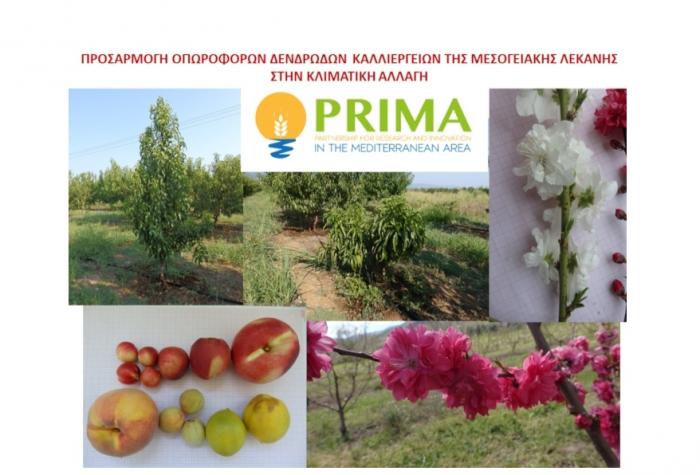 Έναρξη ερευνητικού έργου για την προσαρμογή των δενδρωδών καλλιεργειών στην κλιματική αλλαγή στο ΤΦΟΔ Νάουσας