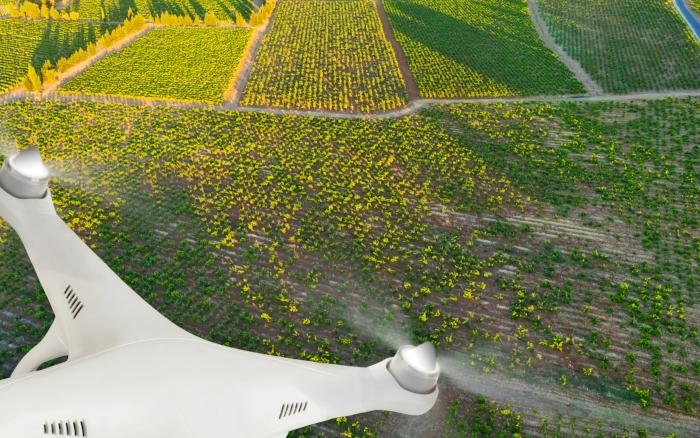 Ο ρόλος των drones σε ένα χωράφι