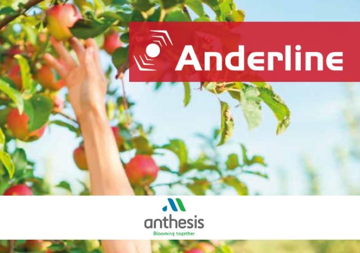 Καταπολέμηση ΤΕΤΡΑΝΥΧΟΥ  σε καλλιέργειες μηλιάς και ροδακινιάς από την ANTHESIS