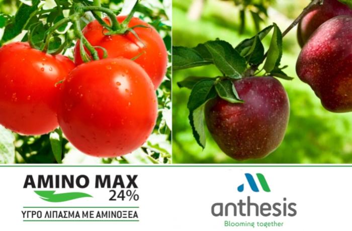 AMINO MAX 24% - Βοηθάει το φυτό σας να αντεπεξέλθει σε οριακές καταστάσεις