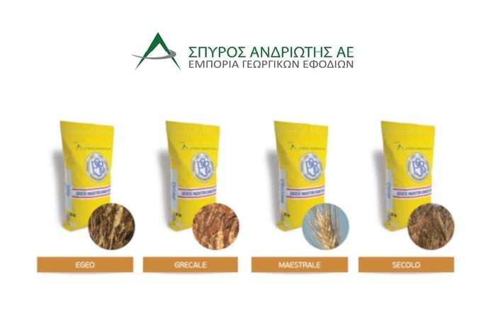 Σταθερά υψηλές αποδόσεις και ποιότητα με τις 4 ποικιλίες σκληρού σίτου που μας προτείνει η Σπύρος Ανδριώτης Α.Ε.