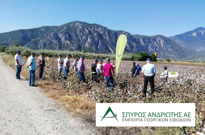Field day βαμβακιού στην Ηράκλεια Φθιώτιδας, από την Σπύρος Ανδριώτης ΑΕ