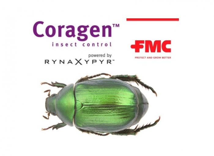 Το Coragen® 20SC της FMC διευρύνει τις χρήσεις του και κατά του χρυσοκάνθαρου