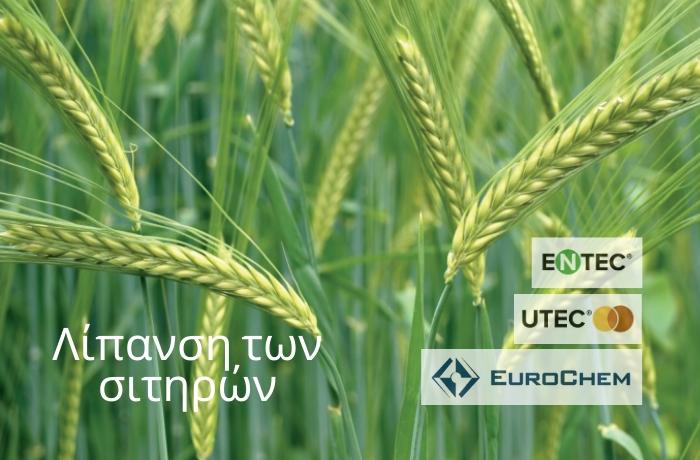 Λίπανση των Σιτηρών με λιπάσματα ΕNTEC® και UTEC®, από τη EUROCHEM AGRO