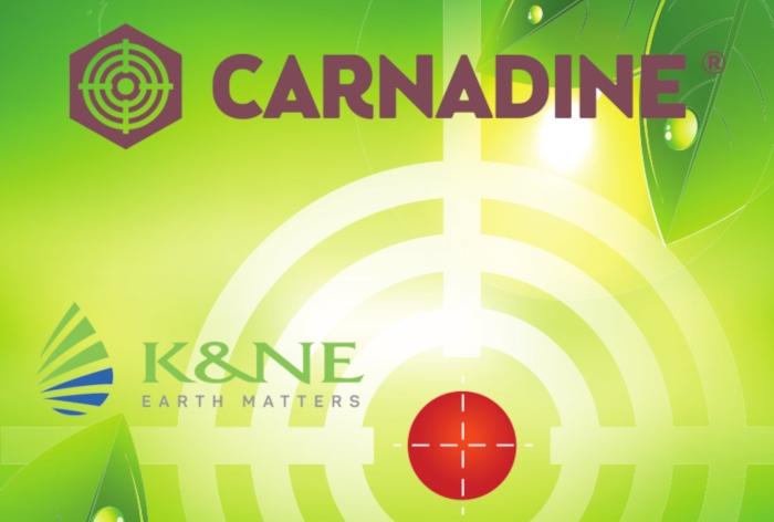 CARNADINE 20SL: Νέο εντομοκτόνο με έγκριση στην Ελιά για Πυρηνοτρήτη και Δάκο, από την K&N Ευθυμιάδης